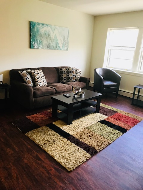 Living Room Couch and Rug