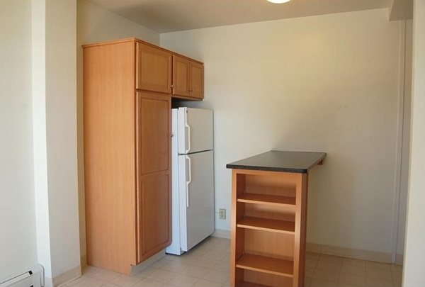 Fridge and Storage Cabinets