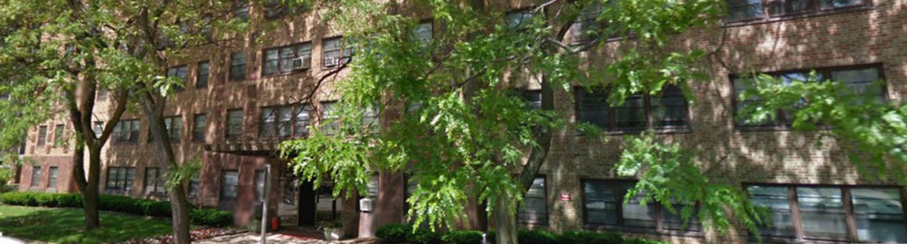 Trees and Side of building